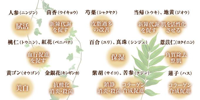 主な和漢植物